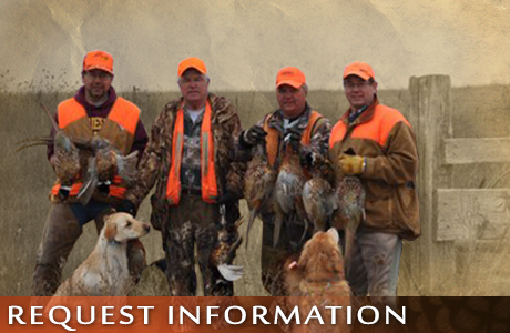 Contact UGUIDE South Dakota Pheasant Hunting