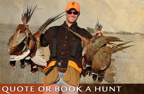 Request a Quote or Book A Pheasant Hunt With UGUIDE South Dakota Pheasant Hunting