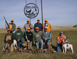 Wild Pheasants are doing well in the Dakota's so far in 2008