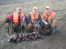 Pheasant Hunting in South Dakota 1