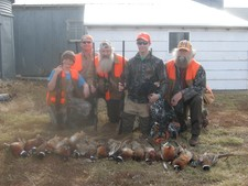 Pheasant Hunting in South Dakota 3