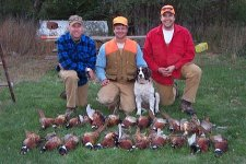Self Guided Pheasant Hunting