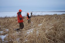 Upland Bird Hunting at UGUIDE