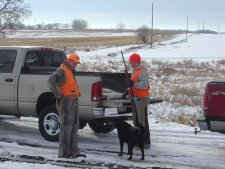 South Dakota Late Season Pheasant Hunting