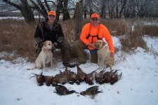 South Dakota Pheasant Outlook